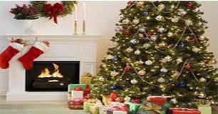 Cây Thông Giáng Sinh