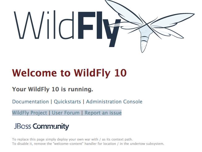 Find Juicy Wildfly 10 Instances