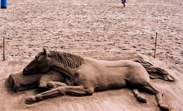 Top Ten Bikes Of World The World S Best Sand Sculptures