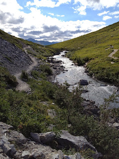 Trail in Denali National Park