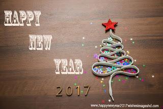 happy new year photo 2017