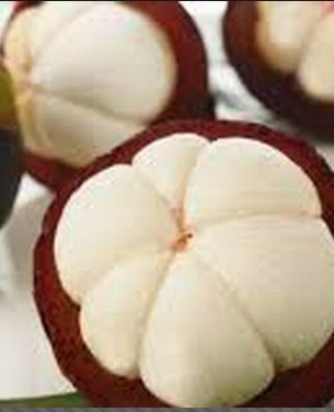 Anim Agriculture Technology Mangosteen Benefits Of It