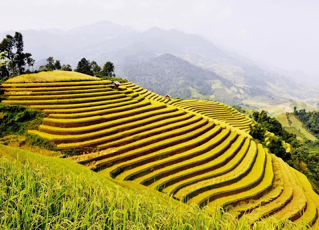 The peaceful beauty of Xin Man 6