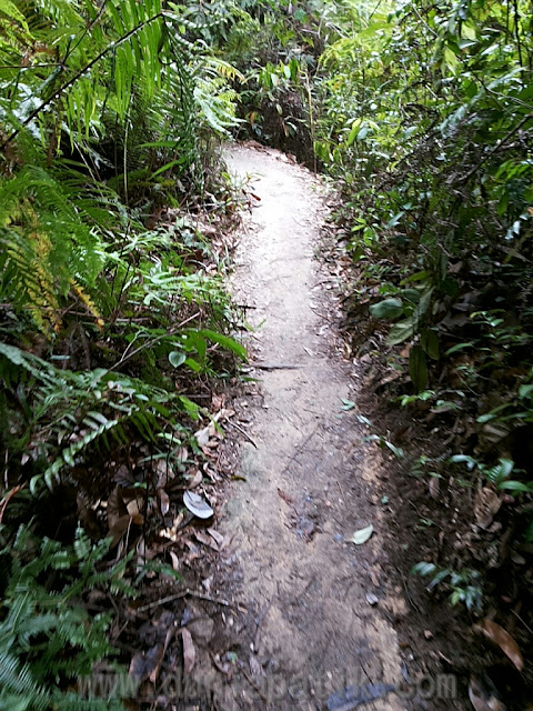 Laluan untuk ke air terjun Sungai Chiling