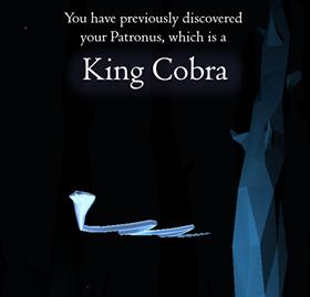 Cobra Reale di Paolo Scotti