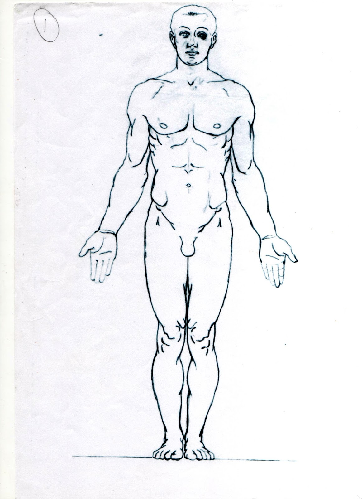Artistic Anatomy Glasgow: Man Diagram from Dr Paul Richer (a bit of ...