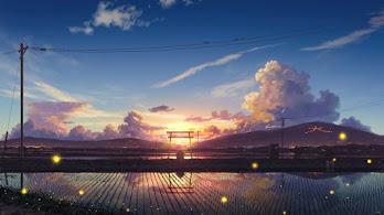 Sunrise, Anime, Scenery, Paddy Field, Farm, 4K, #4.2412