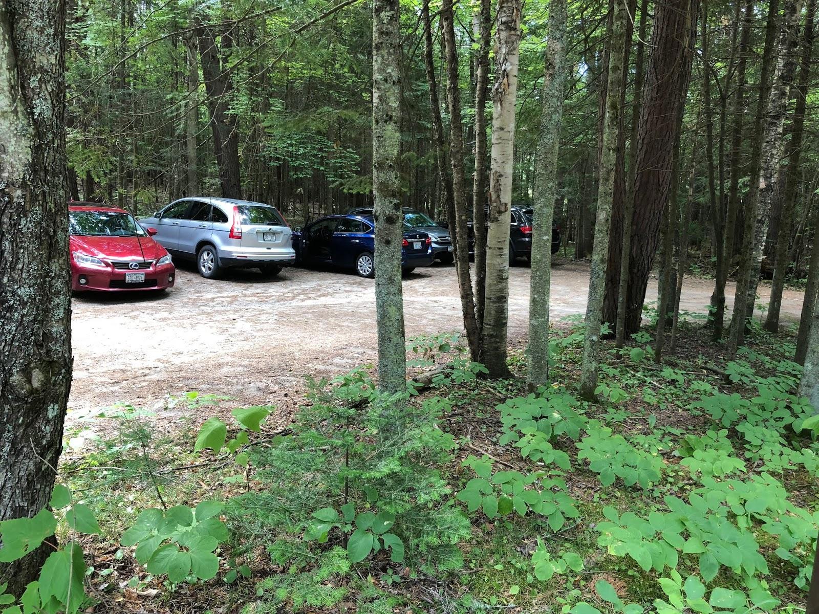Summit Hiking in New England: Scarface Mountain (Saranac 6/6