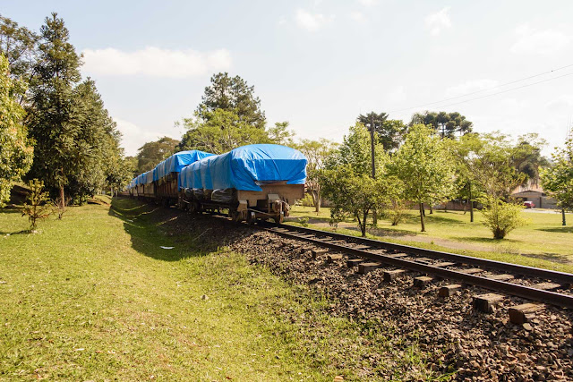 Olha o trem