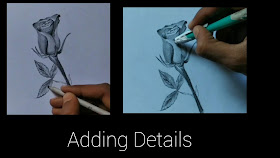 How to draw Rose step by step tutorials, Rose drawing, drawing for beginners