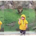 SHOCKING VIDE: LION HOLDS TO A BOY TO TURN HIS BACK ON HIM AND THAN JUMP ON HIM