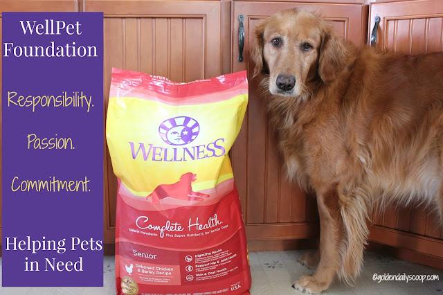 Wellness Pet's WellPet Foundation