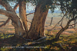 whitegum trees landscape oil painting by andy dolphin