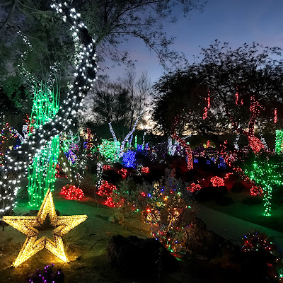 Thrifty Wife, Happy Life    30 Kid friendly places in Las Vegas, Ethle M's Cactus Garden at Christmas time