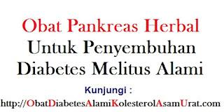 Obat Pankreas herbal untuk penyembuhan diabetes melitus alami