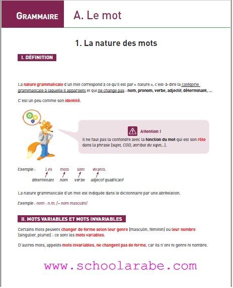 Télécharger live les bases grammaticales de la langue française