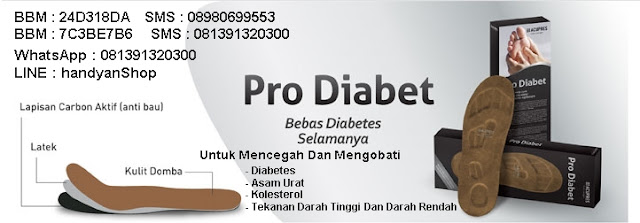 Mengatasi Dan Mencegah Diabetes Menggunakan Pro Diabet
