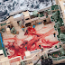 Breaking News – Whale Slaughterhouse Has Been Found!