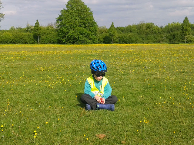 Boy Sitting in Buttercup Field