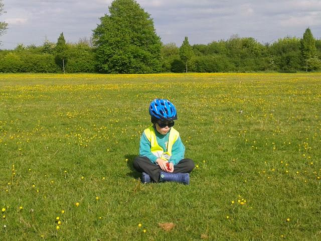Boy Sitting in Buttercup Field