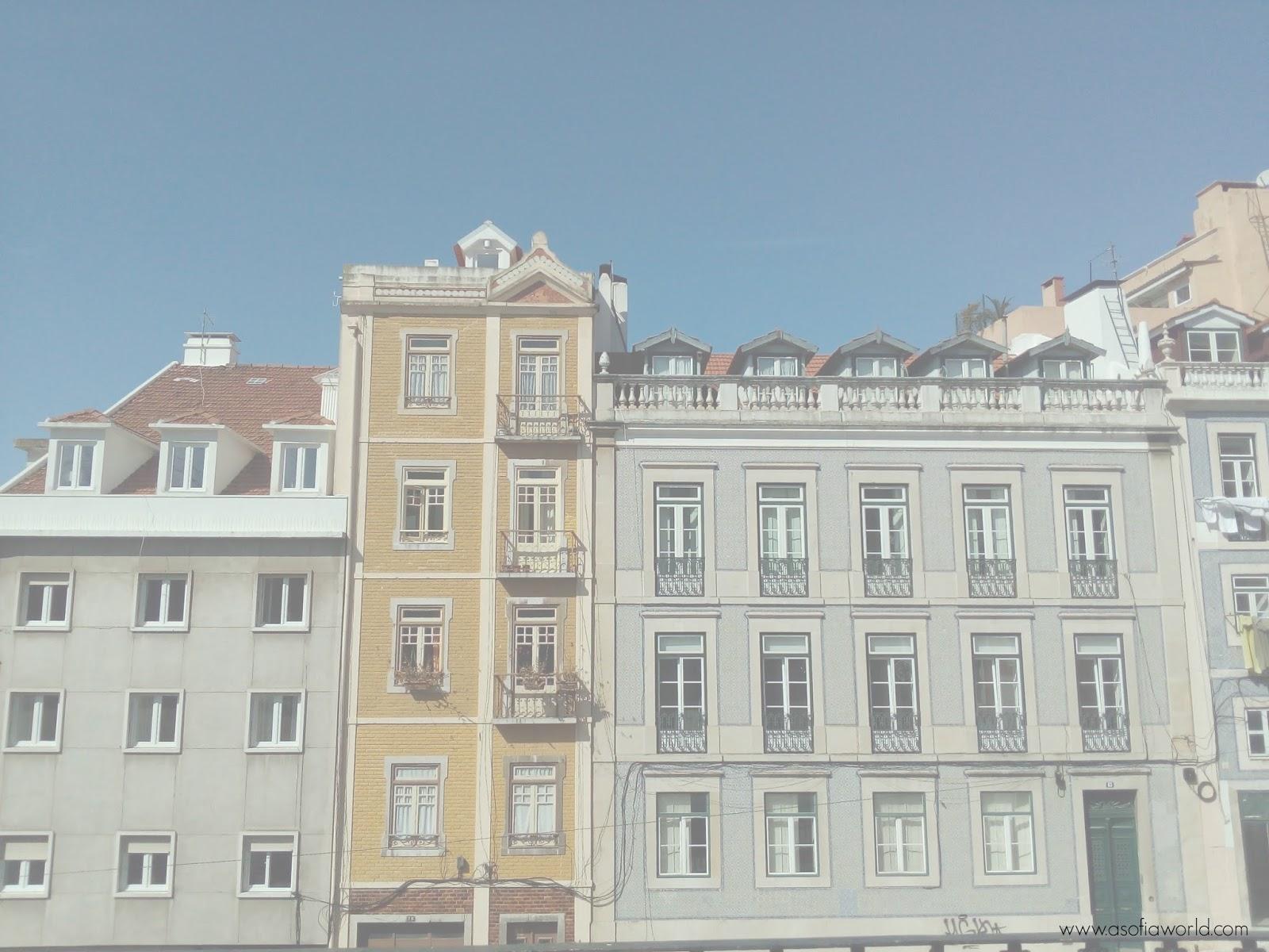 De Lisboa.