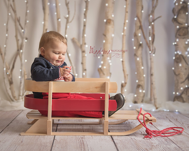 DeKalb Sycamore IL Christmas Mini Session with white lights and birch trees indoor