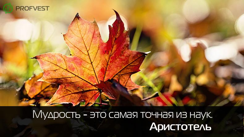 Оптимальный ПАММ-портфель на сентябрь 2014