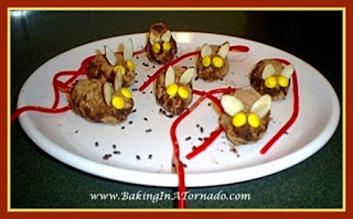 Yellow Eyed Mice  | www.BakingInATornado.com