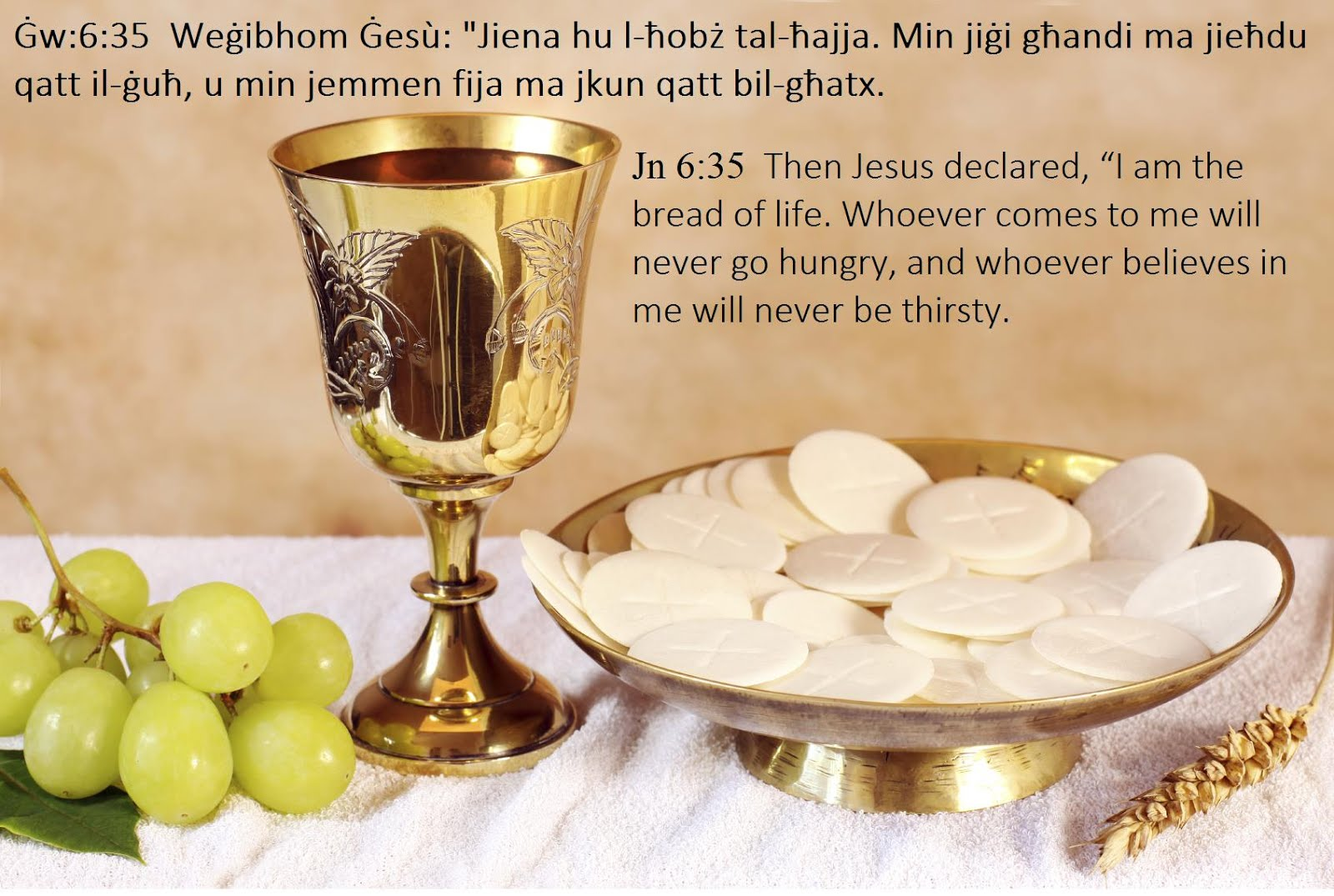 The Sacrament of the Most Holy Eucharist - A Collection of Quotes ...