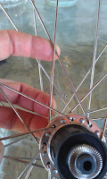 "Intelligent Design Cycles, PD-8 36 hole Dynamo Hub, IDC, Stout Wheel set, ""Veterans and Their Pets"", ""Tour De PACLANTIC"", ""Harold & Daisy"""