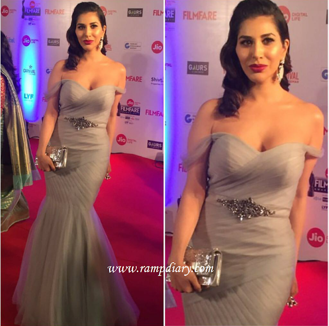 Sophie Choudry In Terani Couture At Filmfare Awards 2017