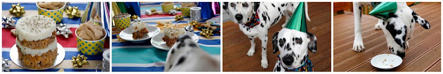 Dalmatian dogs having a birthday party with bake, treats, and party hats