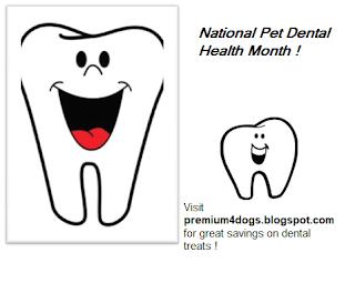 National Pet Dental Month