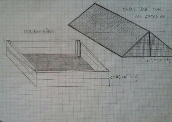 Bauhaus gräsmatta