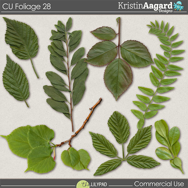 http://the-lilypad.com/store/digital-scrapbooking-cu-foliage-28.html