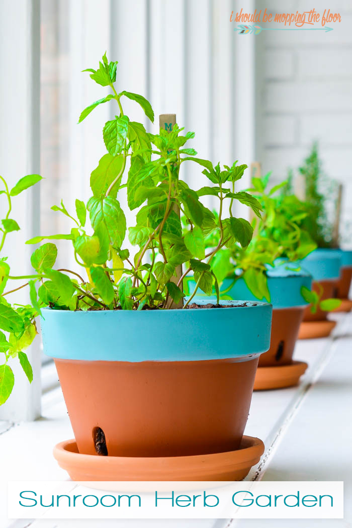 Indoor Herb Garden | Bring the herbs inside so they last longer in extreme conditions. This project is easy to put together and is the perfect low maintenance herb garden.