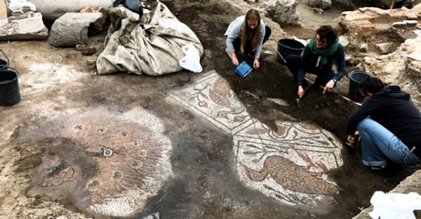Peacock floor mosaic, fragments of Byzantine mural found at Plovdiv's Great Basilica site