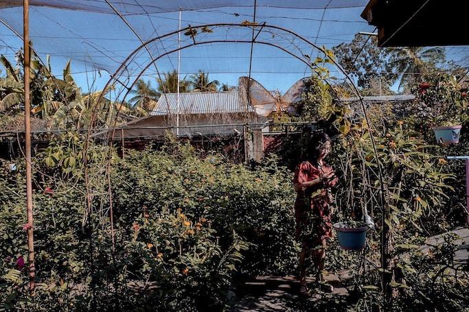 marinduque tourist spot butterfly garden