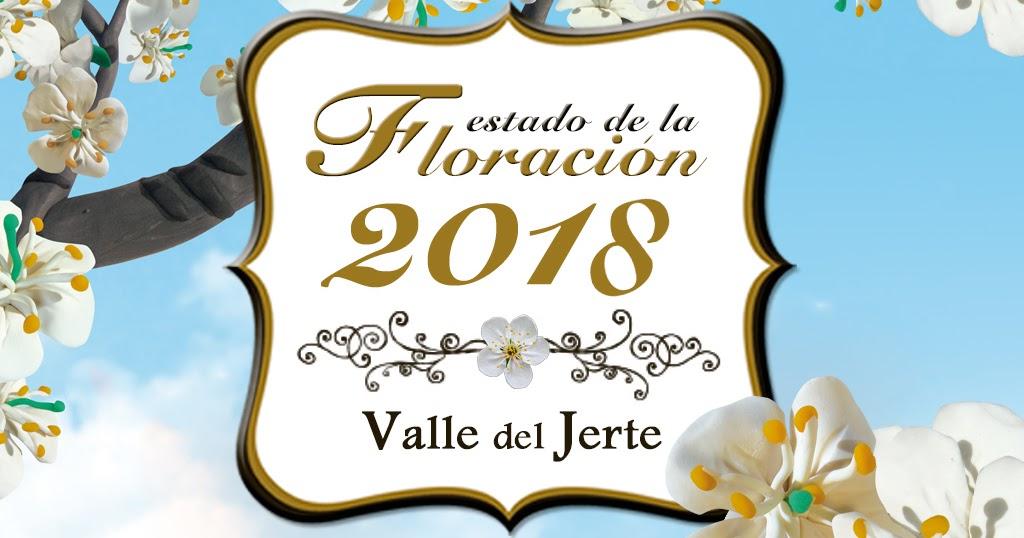Cerezo en flor valle del jerte programa oficial estado for Oficina de turismo valle del jerte
