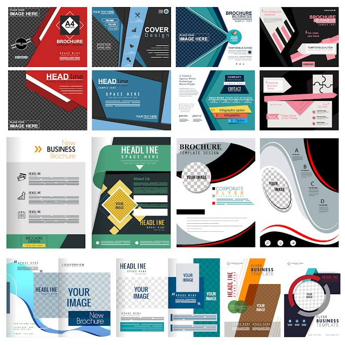 Corporate brochures collection elegant colored modern abstract decor Free vector