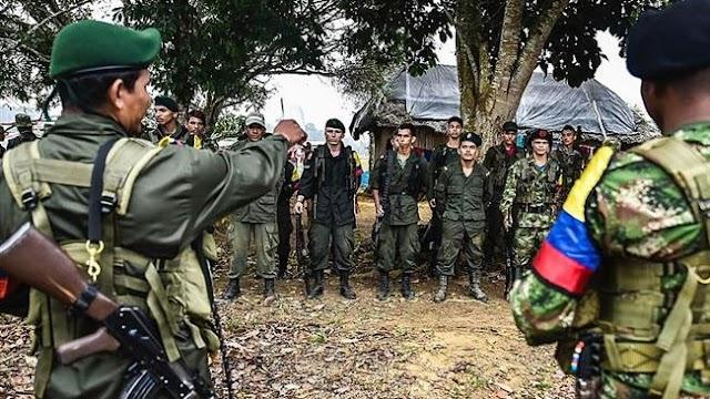 'Armed gunmen kill 6 ex-FARC members in Colombia'