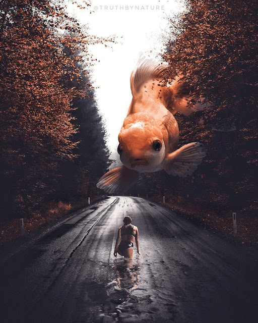 Photo Manipulations and Surrealism | The digital art of Truthbynature