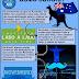 Novembro Azul – 9 dicas para prevenção do câncer de próstata