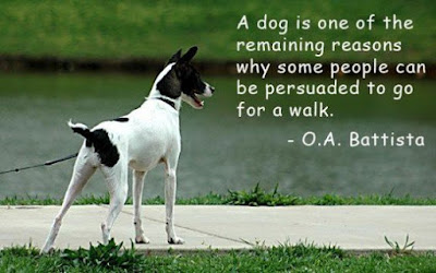 a dog is one of the remaining reasons why some people can be persuaded t go  for a walk.