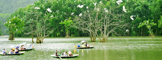 Ninh Binh - A Peaceful land for a soul searching retreat 3