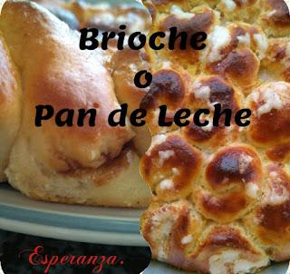 Brioche O Pan De Leche