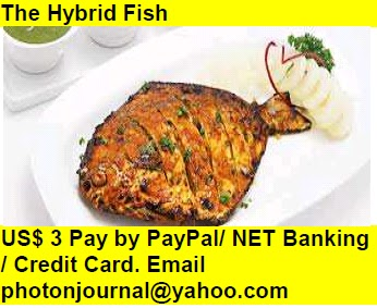 The Hybrid Fish Book Store Buy Books Online Cash on Delivery Amazon Books eBay Book  Book Store Book Fair Book Exhibition Sell your Book Book Copyright Book Royalty Book ISBN Book Barcode How to Self Book