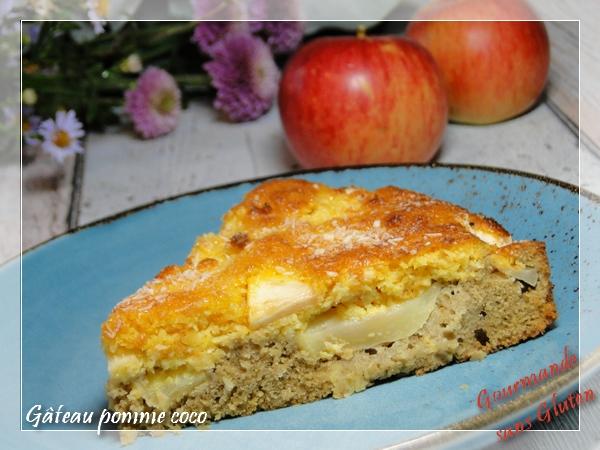 Gâteau pomme coco sans gluten, sans lactose