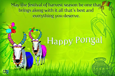 Happy Pongal Wishes Greetings Quotes for Family and Relatives 2017
