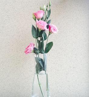 轉載 - 【花之寓意】